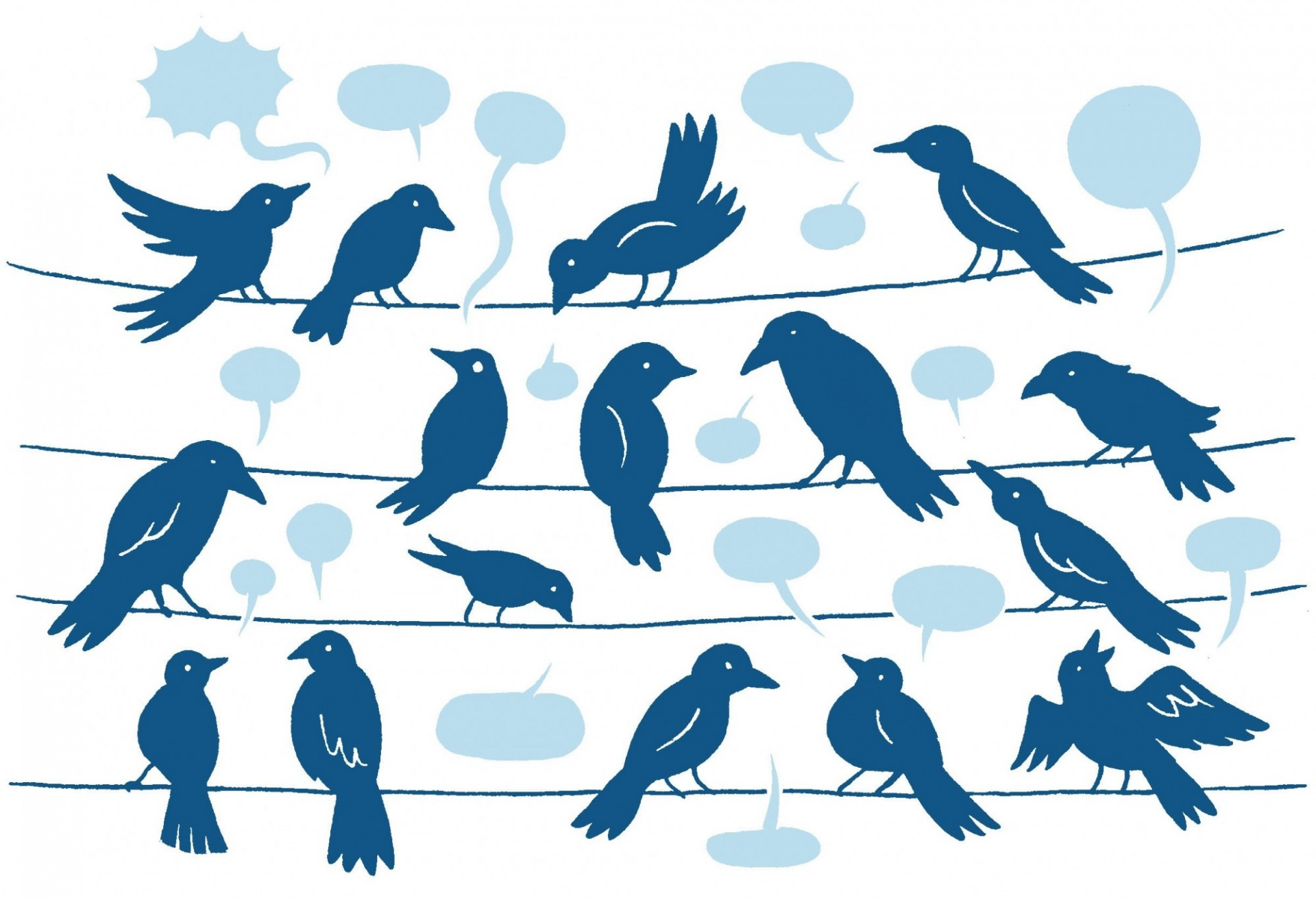 image of birds on a telephone line